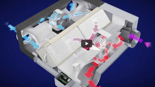 Lossnay RVX Energy Recovery Ventilators