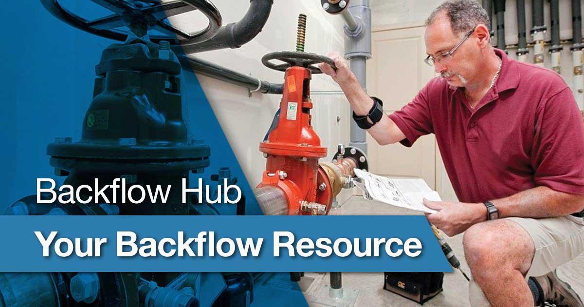 Watts Backflow Hub
