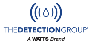 The Detection Group